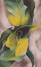 Corn No 3 1924 - Georgia O'Keeffe