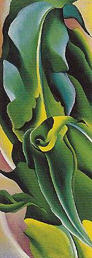 Corn No 2 1924 - Georgia O'Keeffe