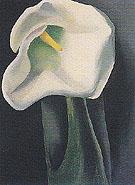 Calla Lily With Black 1923 - Georgia O'Keeffe