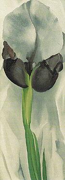 Dark Iris No 1 1927 - Georgia O'Keeffe