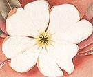 White Flower On Red Earth 2 1943 - Georgia O'Keeffe