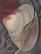 Shell No 2 1928 - Georgia O'Keeffe