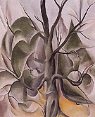 Grey Tree Lake George 1925 - Georgia O'Keeffe