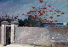 A Wall Nassau 1898 - Winslow Homer