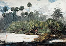 In a Florida Jungle c1885 - Winslow Homer reproduction oil painting