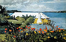 Flower Garden and Bungalow Bermuda - Winslow Homer