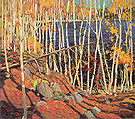 In the Northland c1915 - Tom Thomson reproduction oil painting