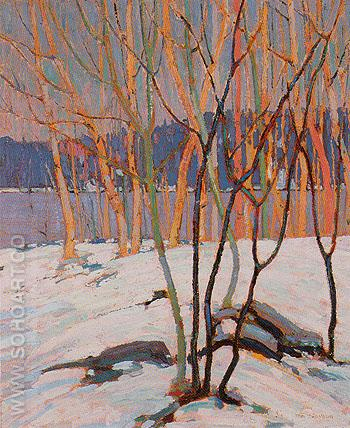 The Birch Grove Algonquin Park c1916 - Tom Thomson reproduction oil painting