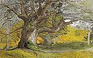 Oak Trees Lullingstone Park 1828 - Samuel Palmer