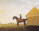 Turf with Jockey Up at Newmarket c1765 - George Stubbs