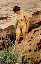 Nude by the Shore 1914 - Anders Zorn reproduction oil painting