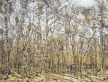 The Beech Tree Forest 1885 - Ferdinand Hodler reproduction oil painting