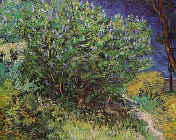 Bushes 1889 - Vincent van Gogh reproduction oil painting