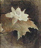 Waterlily 1881 - Abbott Henderson Thayer