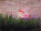 Roseate Spoonbill c1905 - Abbott Henderson Thayer