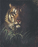 Tigers Head c1874 - Abbott Henderson Thayer