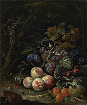 Still Life with Fruit Foliage and Insects c1669 - Abraham Mignon