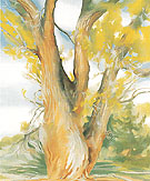 Cottonwood Tree New Mexico 1943 - Georgia O'Keeffe