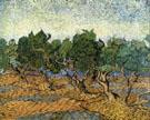 Les Oliviers I 1889 - Vincent van Gogh