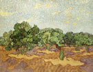 Olive Grove II - Vincent van Gogh reproduction oil painting