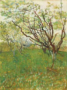 Orchard in Blossom A - Vincent van Gogh