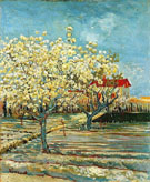 Orchard in Blossom B - Vincent van Gogh