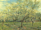 Orchard with Blossoming Plum Tree 1888 - Vincent van Gogh