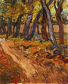 Path in the Garden of the Asylum November 1889 - Vincent van Gogh