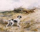 English Setters Pointing - Edmund Henry Osthaus reproduction oil painting