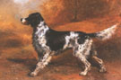 English Setter Toledo Blade - Edmund Henry Osthaus reproduction oil painting