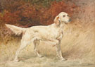 Setter - Edmund Henry Osthaus reproduction oil painting
