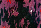 Untitled 1974 - Clyfford Still