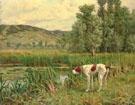 A Pointer Marking Wildfowl in the Reeds - Percival Leonard Rosseau