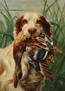Setter and Mallard 1910 - Percival Leonard Rosseau reproduction oil painting