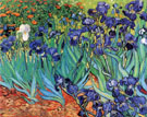 Irises in Garden St. Remy - Vincent van Gogh reproduction oil painting