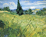 Green Wheat Field with Cypresses 1889 - Vincent van Gogh reproduction oil painting